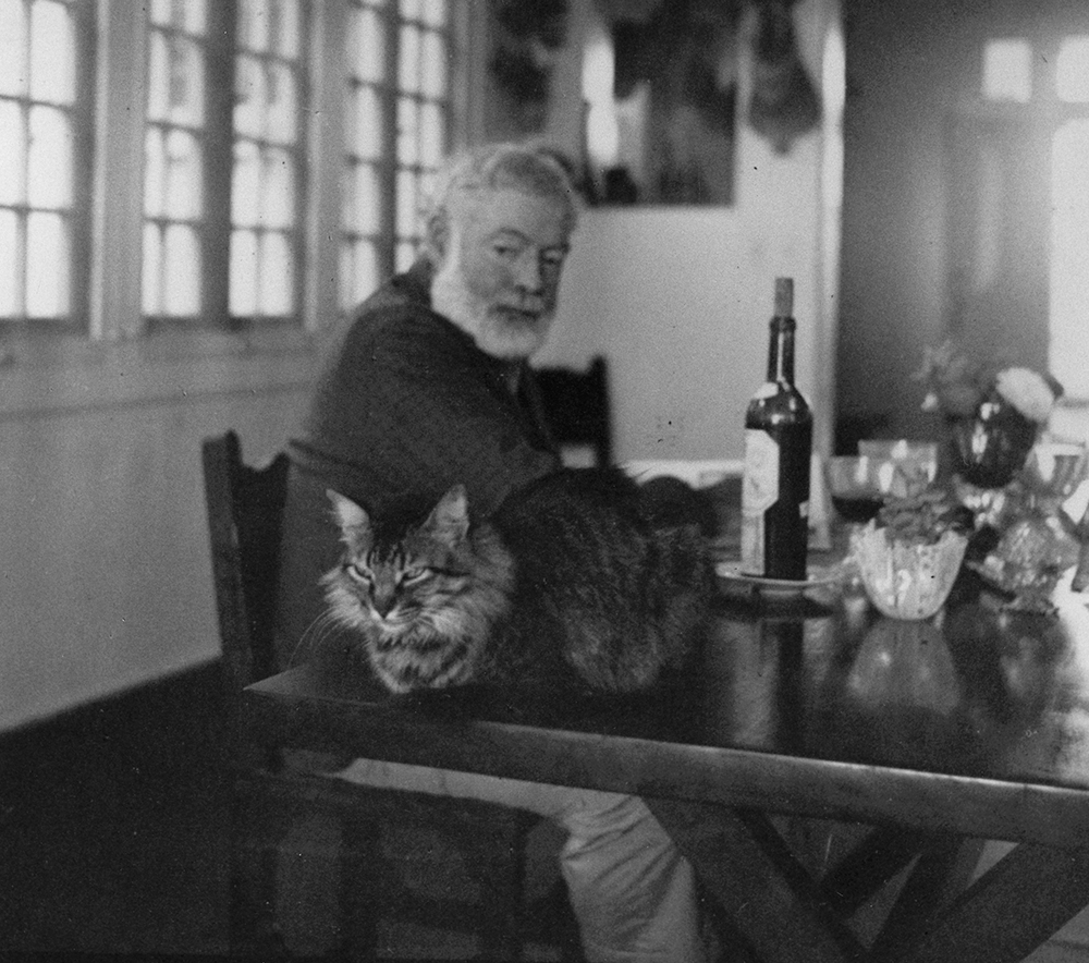 EH3941P Ernest Hemingway looks at his cat sitting near him on the table at the Finca Vigia, Cuba. Photographer unknown in the John F. Kennedy Presidential Library and Museum, Boston.